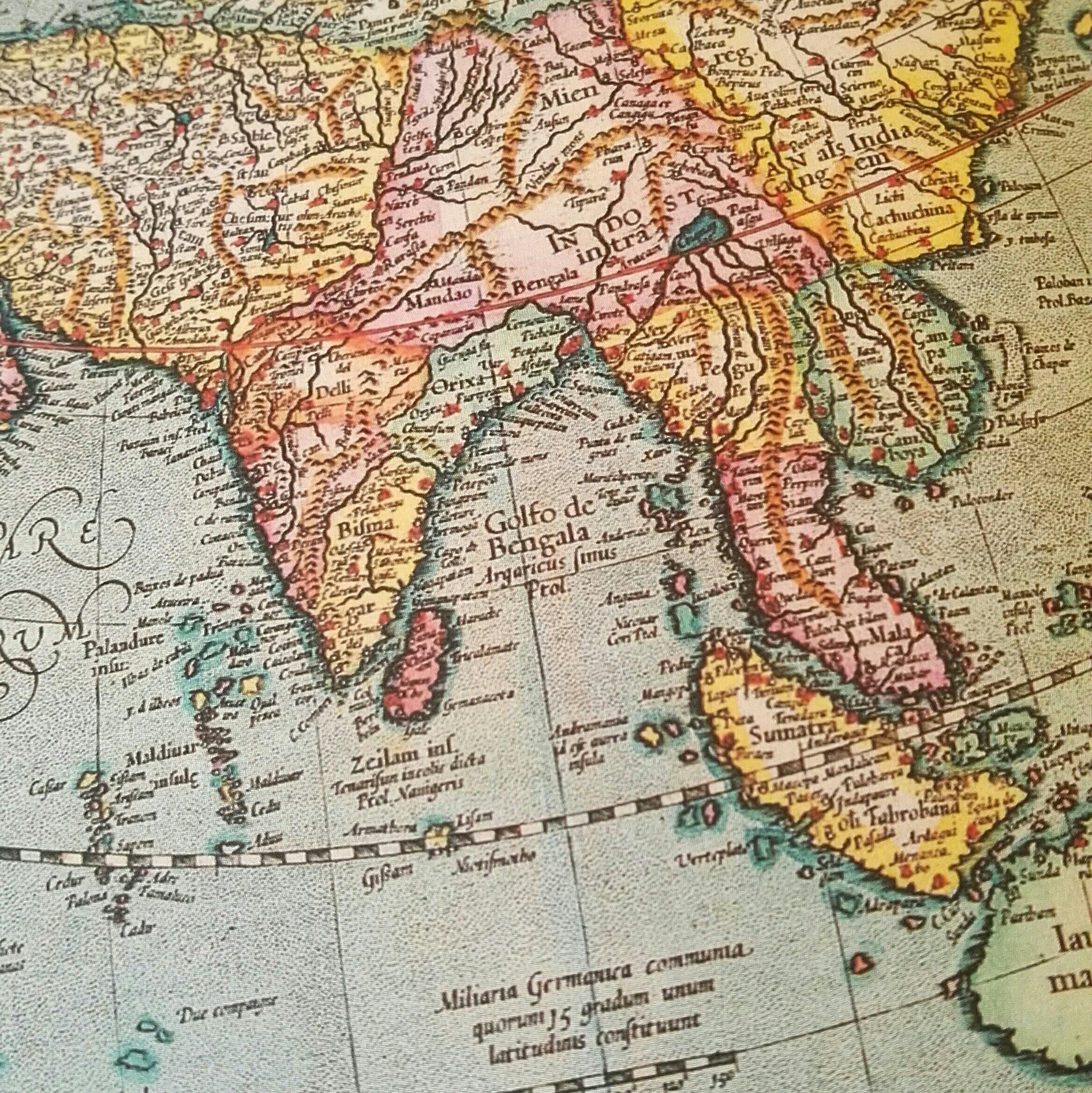 curcuma asia